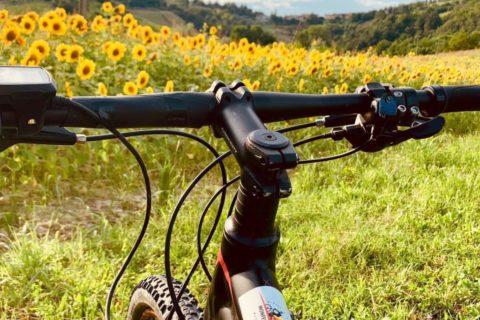 Escursioni in E-Bike 04