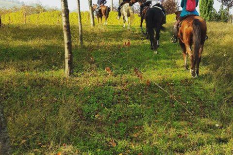 passeggiate-a-cavallo-02