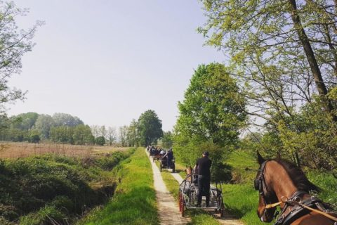 passeggiate-a-cavallo-03